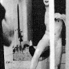 "Paul McCartney's Naked Photo In The Beatles ""White Album"" Photo Collage"