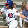 Eddie Vedder Attended The Chicago Cubs 2011 Baseball Fantasy Camp