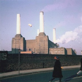 animals_battersea_pink_floyd_photo_shoot_pig