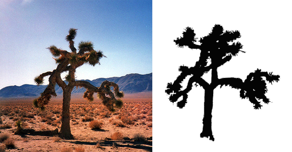 U2 The Joshua Tree Death Valley Album Cover Location
