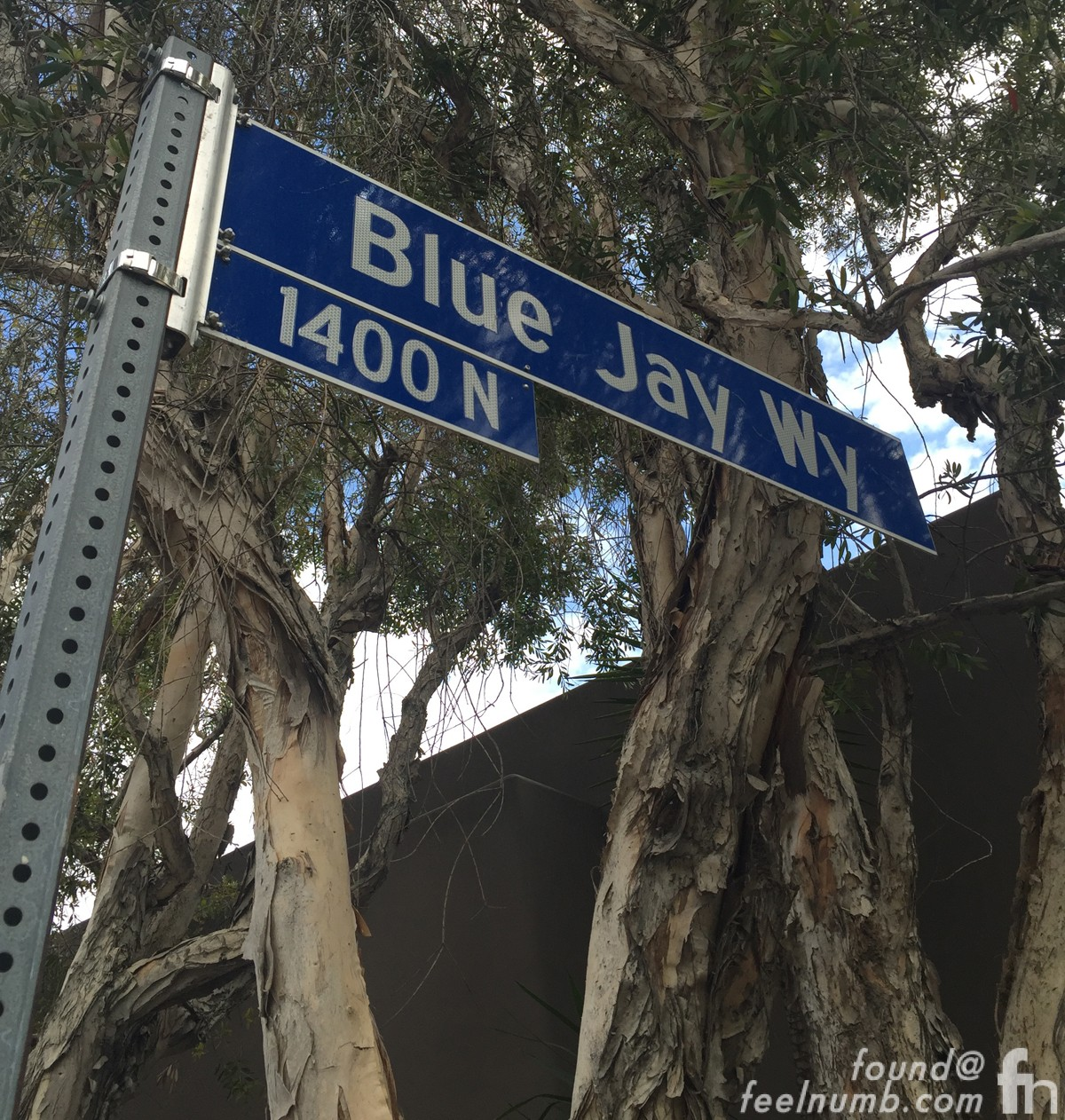 George Harrison Rented Home Blue Jay Way Los Angeles California The Beatles Location Address