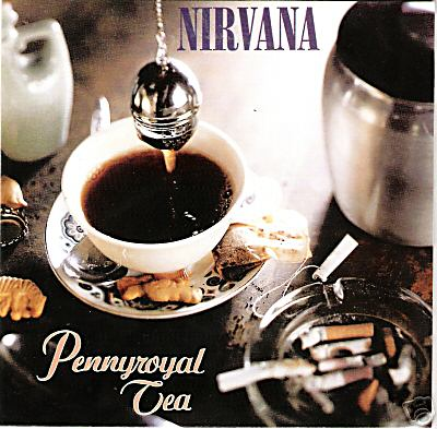 Nirvana Pennyroyal Tea Herbal Abortion Plant Kurt Cobain