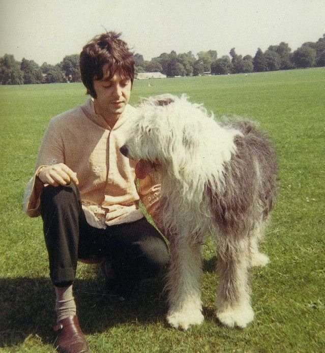 Paul McCartney Dog Martha My Dear