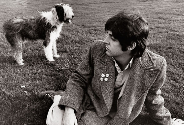 Paul McCartney's Dog Martha My Dear