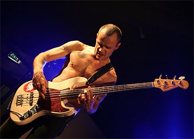 flea_61_fender_bass_d_boob_sticker_red_hot_chili_peppers