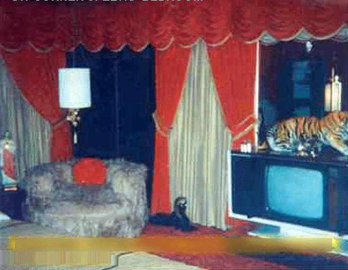 elvis_beedroom_tv_window_graceland
