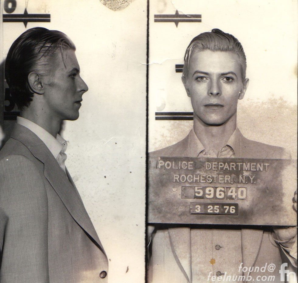David Bowie Thin White Duke Mugshot March 1976 Iggy Pop Sticker