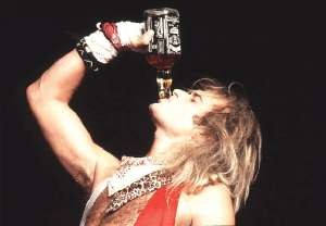 Party Like A Rockstar Jack Daniels David Lee Roth