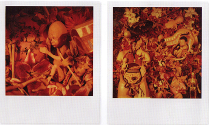 Kurt Cobain Polaroid Nirvana In Utero Back Cover Collage