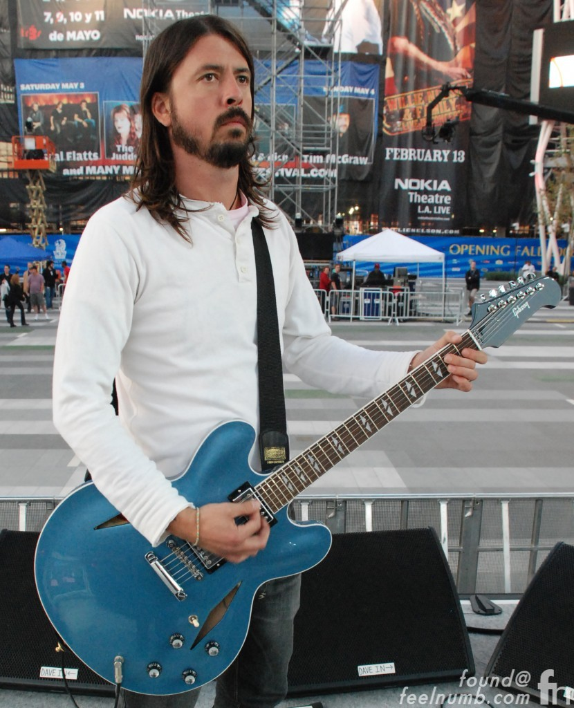Dave Grohl Foo Fighters Gibson DG-355 Guitar Lou