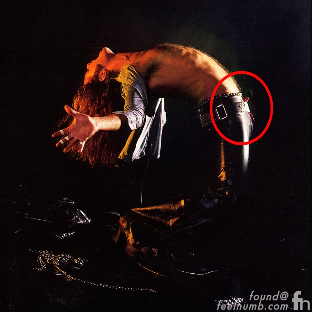 Is That David Lee Roth S Thingy On The Back Cover Of Van Halen S Debut Album Feelnumb Com