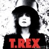 Marc Bolan T. Rex The Slider Top Hat Image Photo By Ringo Starr