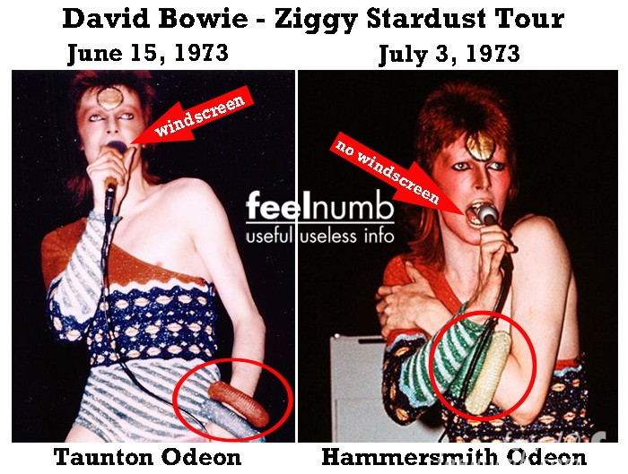 David Bowie Ziggy Stardust Famous Photo Hammersmith Taunton Odeon June 15 July 3, 1973