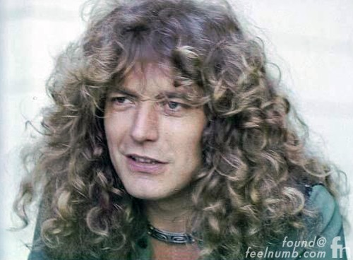 Robert Plant Flower Crown Original Photo Fake