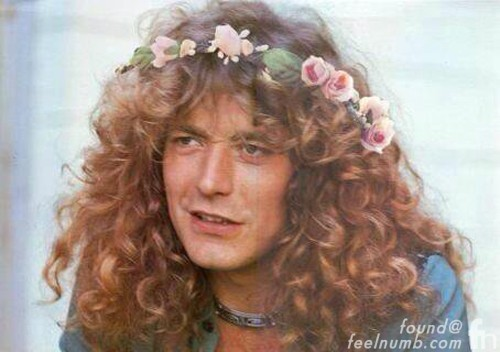 Robert Plant Led Zeppelin Flower Crown