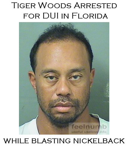 Tiger Woods Mugshot Arrest May 2017 Florida DUI Drunk Nickelback