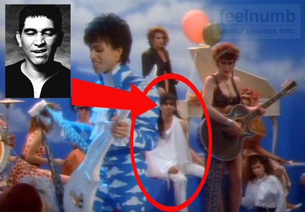 Pat Smear Foo Fighters Prince Raspberry Beret Music Video The Germs